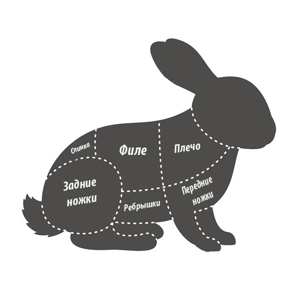 кролик1